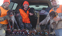 Iowa pheasant hunters harvested more than one million birds annually 33 times since 1962. Since 2000, that's happened only twice. In the upcoming season, the projected harvest of 150,000 to 200,000 is expected to set another record low.