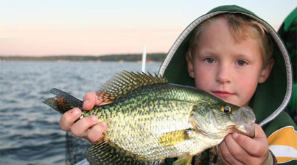 Panfish in Spring can be some of the best of the year, big and plentiful. My favorite lakes in Southern Wisconsin are Delavan Lake and Lake Geneva, both are in Walworth County.