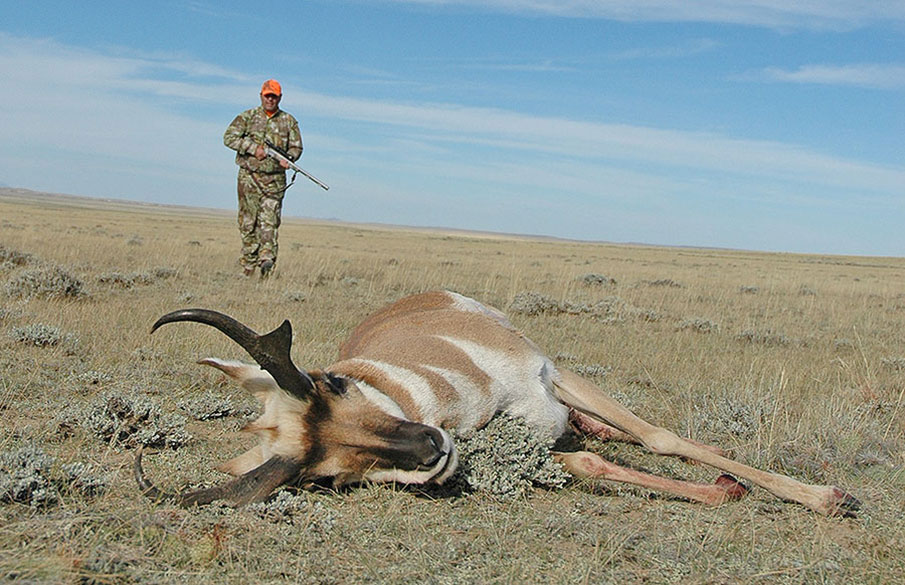 Didn't Draw a Tag: 7 Tips for 'Plan C' Western Hunting Success
