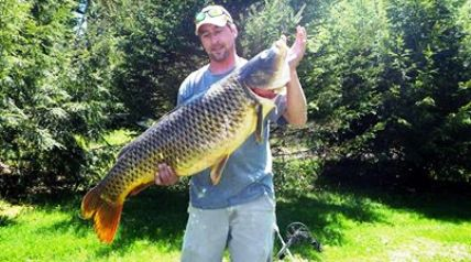 Darren Ouelette was bow-fishing for carp with Taylor Patterson in a backwater area of southern Lake Champlain when Darren spotted a very large carp cruising just below the surface in some flooded trees.