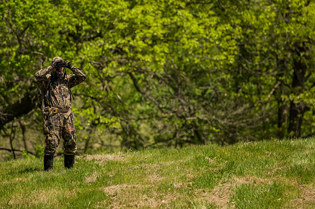 Spring Turkey Scout Tips for Success