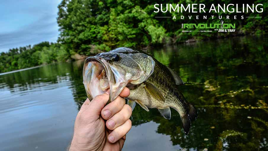 Summer Angling Adventures