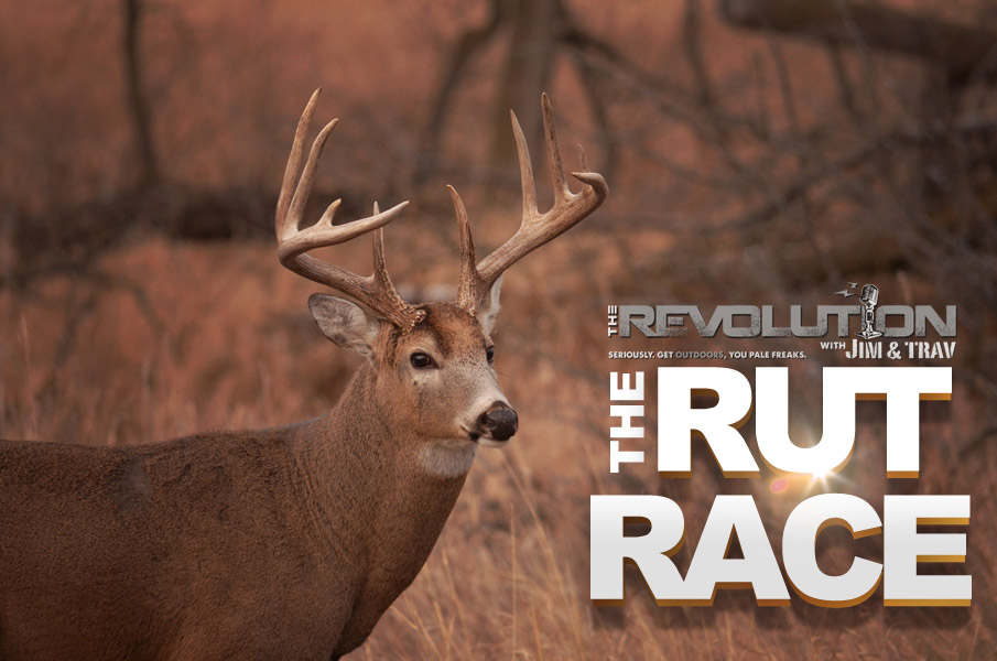 The Rut Race