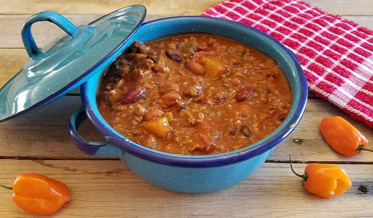 Spicy Mango Venison Chili Recipe