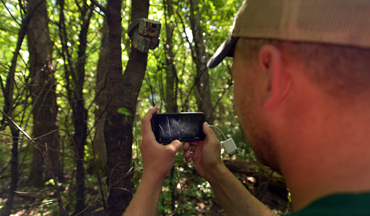 Chances are good that you're not getting the best out of your trail cams.