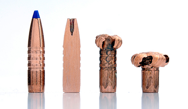 Whatever your hunting philosophy, there's a capable deer bullet that fits your needs. Here's a look at a handful of the finest available today.