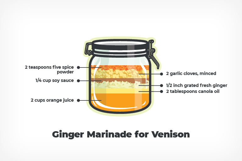 Ginger Marinade Recipe for Venison