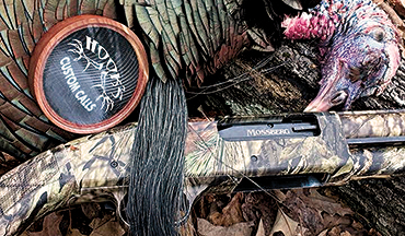 The most modern ammo and gear increase the odds of bagging a tricky tom this spring.