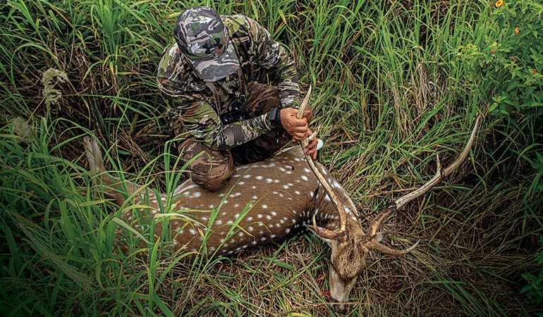 5 Off-Season Adventure Hunts to Get You Through Summer