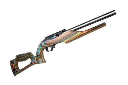 The 10/22 Competition Rifle comes from Ruger's relatively young Custom Shop, and the Green Mountain laminate-stock version tested has a lot of the features competitors look for.