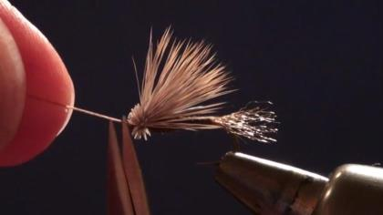 Charlie Craven shows how to tie the X-Caddis fly in this step-by-step video guide.