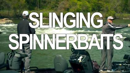 If you're looking for a fun way to find aggressive smallmouths, throw a spinnerbait. In this episode of Beyond the Bait, we'll look at how quickly—and effectively—spinnerbaits can cover water, as well as go over the factors in choosing blade style and bait color to produce smashing smallmouth strikes.