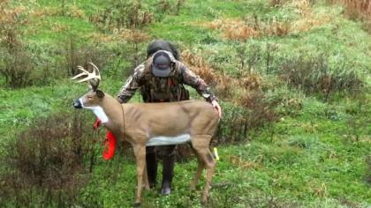 What You Need to Know About Decoying Bucks
