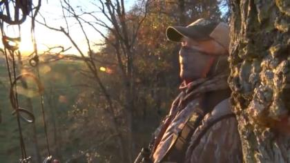 Stan Potts offers advice on how high to place your treestand to hunting whitetails.
