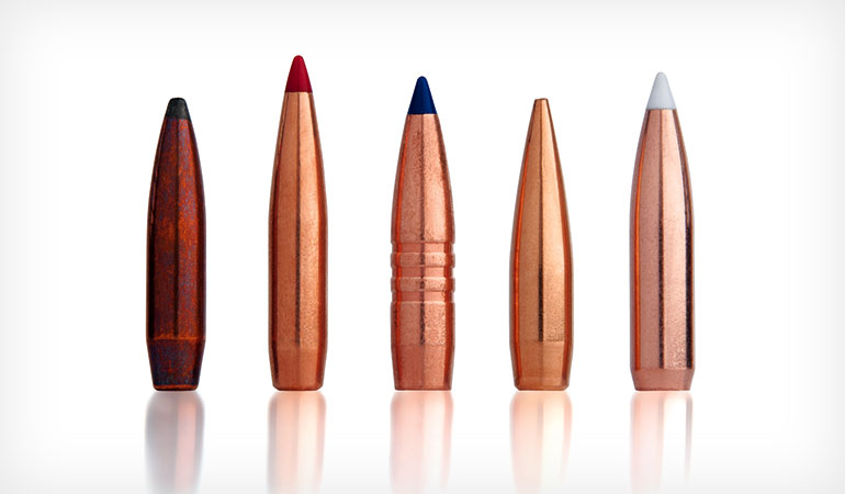5 Accurate Reloading Bullets for Hunting