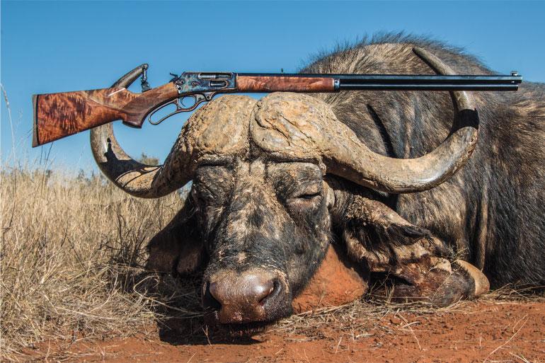 Rifle Cartridges