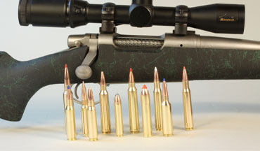 Listed by caliber, here's a look at what big game rifle cartridges are trending upward, and which are not.