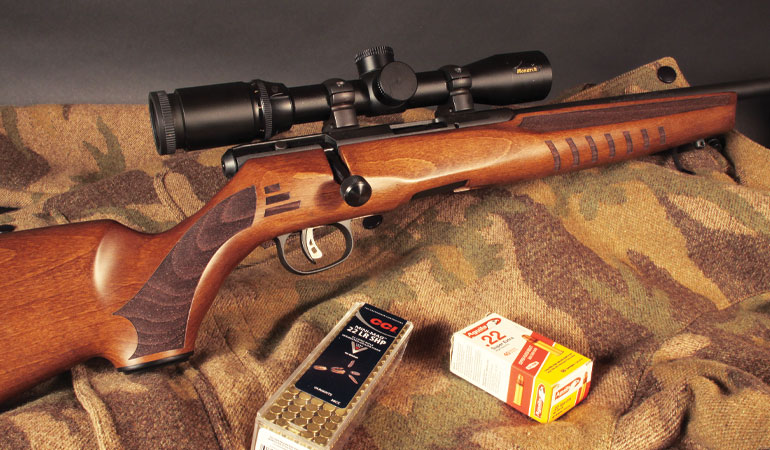 J. Scott Rupp reviews the new Savage B22 G, which feels more like a big game rifle than a .22.