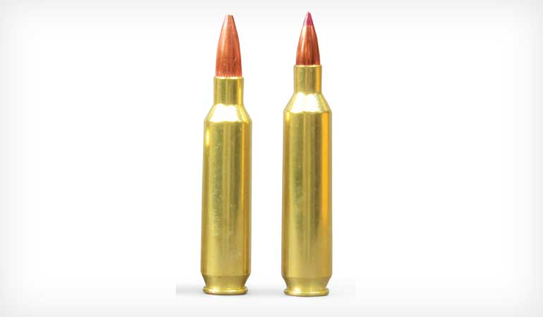 24 Nosler Review: Everything You Need to Know