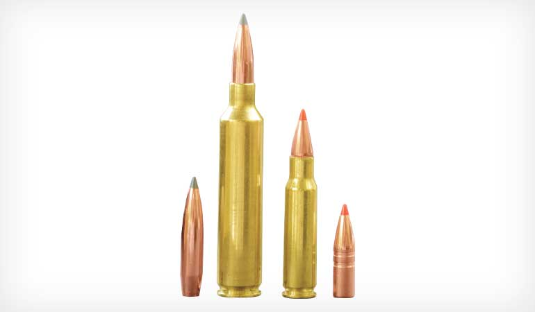 //content.osgnetworks.tv/shootingtimes/content/photos/5-Great-270-Cartridges-2.jpg