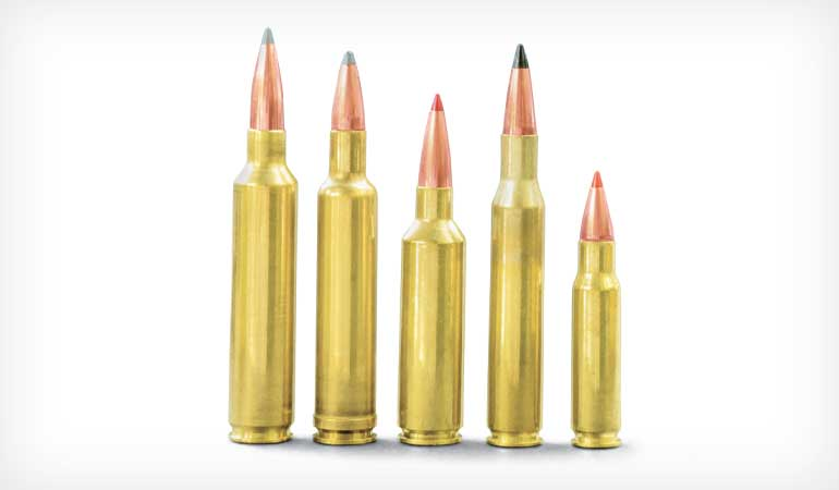 Five Great  270 Cartridges