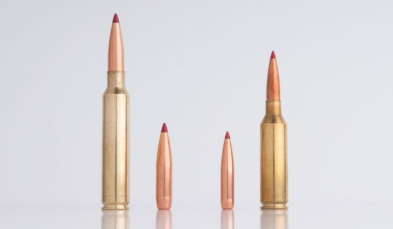 Which is best for you, the 6.5 PRC or .300 PRC? Here's how to pick the right Precision Rifle Cartridge to fit your needs.