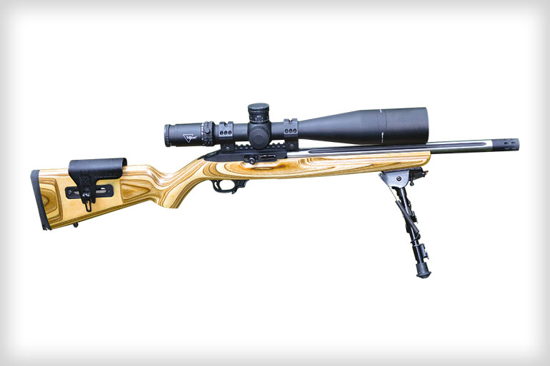 Ruger 10 22 Competition Rifle At 300 Yards