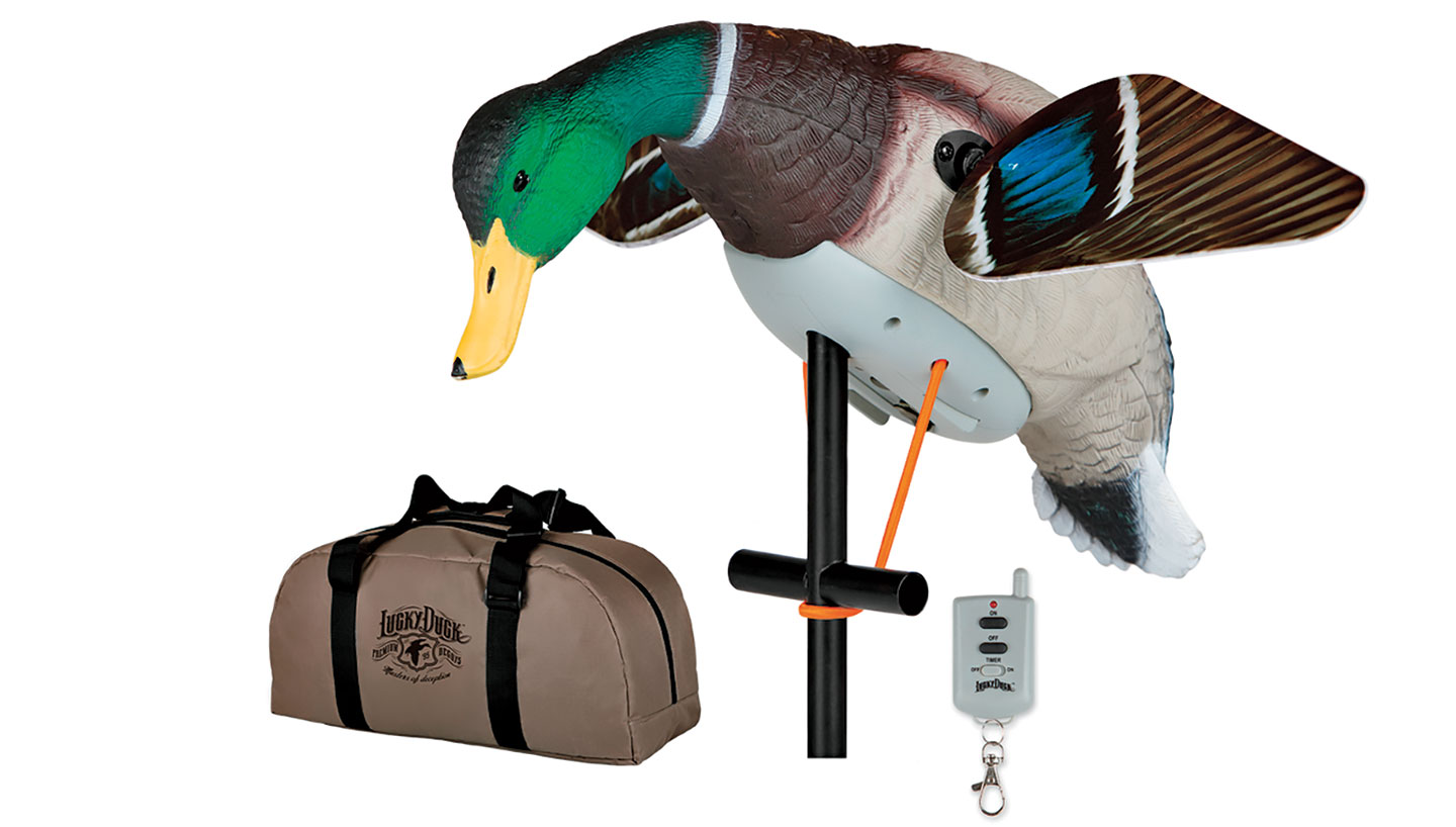 Duck-Decoys-2018-12