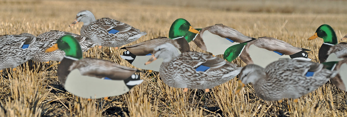 Duck-Decoys-2018-19
