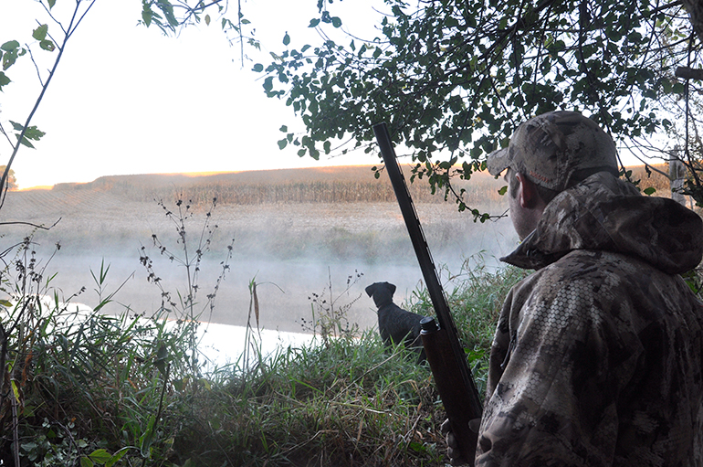 duck hunter with lab looking for birds