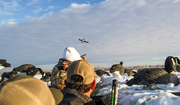When cold strikes waterfowl flood into Nebraska, the Midwest is as good as it gets.