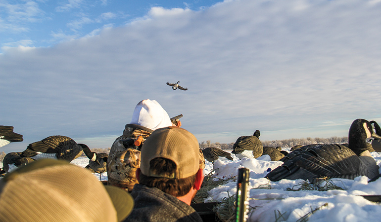 Is Nebraska Better Than Canada for Waterfowl Hunting?