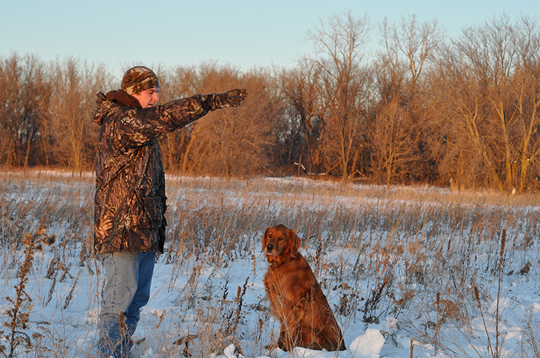 hunter teaching dog hand signals