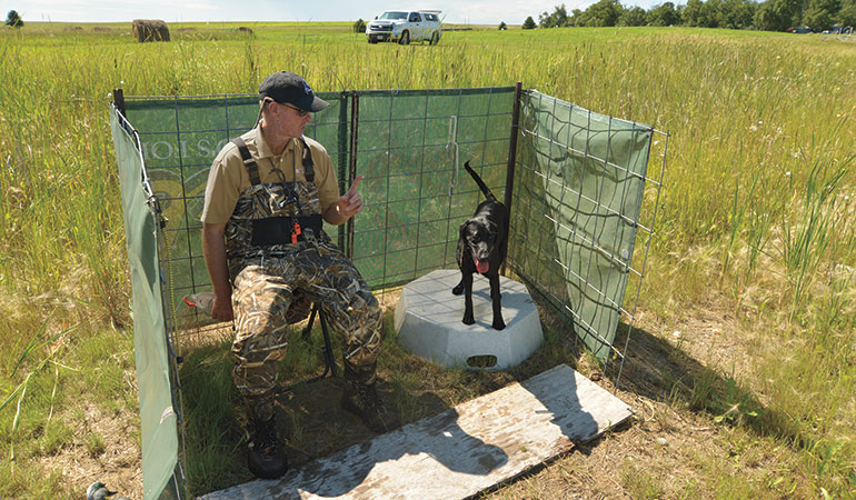 <p>Don't accept anything less than 100 percent during drills if you want your dog to perform in the field.</p>