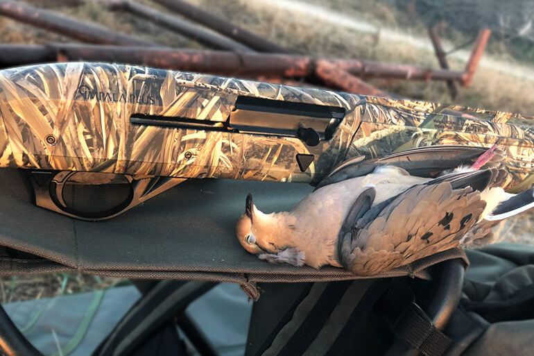 Impala Plus Max 5 Synthetic Shotgun Offers More Bang for Your Duck