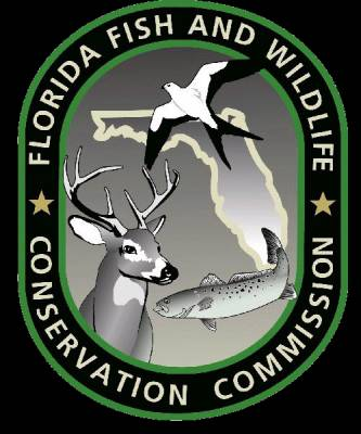 FWC Seeks Input On Possible Red Drum Rule Changes