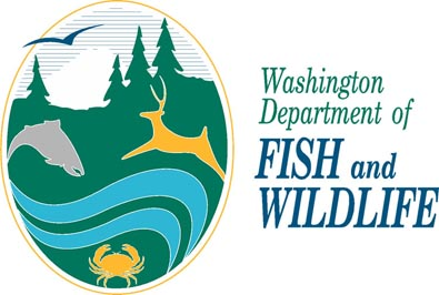Early Steelhead Fishing Closures In Washington