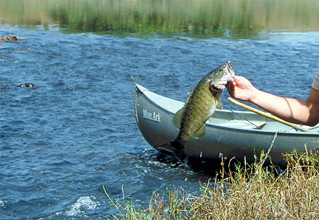 Bass Fishing Remote Areas by Canoe