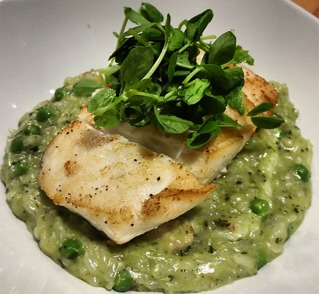Wild Halibut with Green Pea and Pancetta Risotto