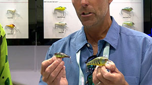 From the 2016 ICAST Show, Chad LaChance and Adrian Avena reveal new options for Pitbull and Digger crankbaits.
