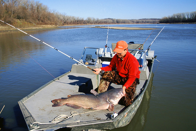 10 Best States for Catfishing
