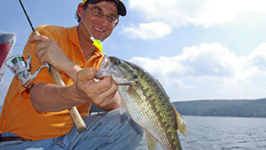Next time you're out fishing, try a mini-lure to try to hook a big bass.