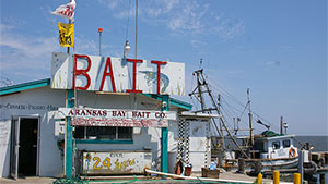 A great bait and tackle shop is more than a place to buy lures and bait; it's a self-contained playground for the fishing afflicted that's part discount store, part restaurant, part school and part museum.