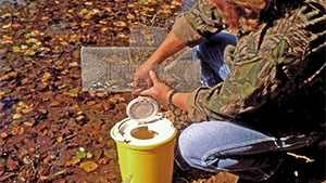 When you consider the high price of live fish bait, it makes good sense to build an inexpensive trap and collect your own minnows.
