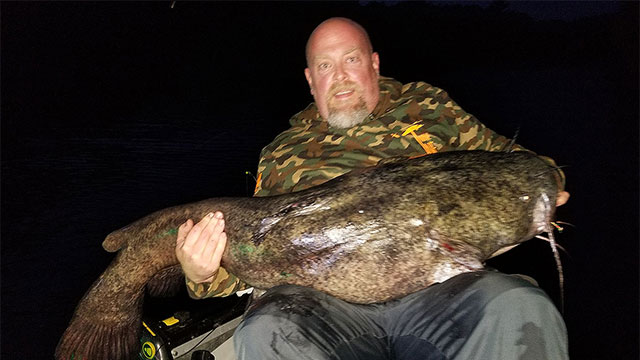 Fisherman Breaks Minnesota Flathead Catch-and-Release Record