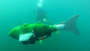 "Learn how fish robots or ""fishbots"" are changing the game for a variety of industries."