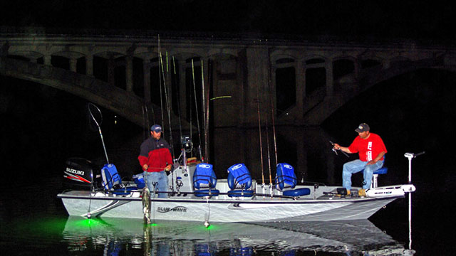 Night Fishing with Lights: Equipment and Tips