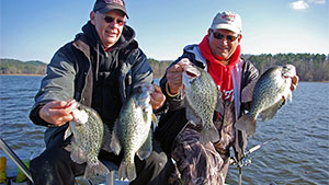 Using the right techniques under the right conditions, panfish such as bream, crappie, yellow perch, rock bass and white bass can be caught throughout the winter months.