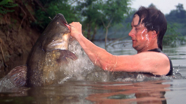 How the Catfish Noodling Craze Washed Over America