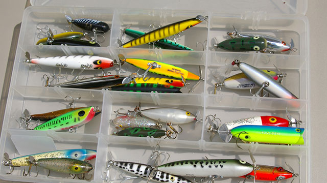 Prop Bait Tips for September Bass